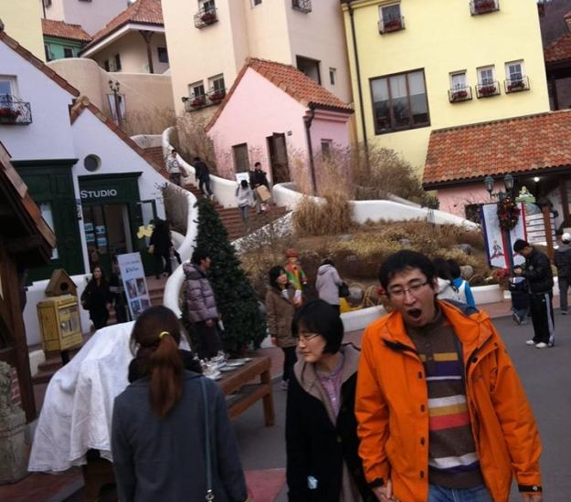 [No Shopping] Petite France & Nami Island review photo 1