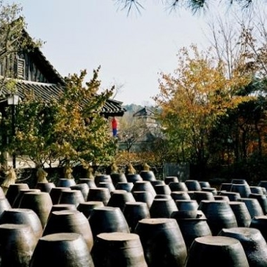 [No Shopping] Korean Folk Village tour