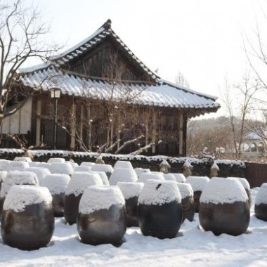 [No Shopping] Folk Village&Suwon Hwaseong