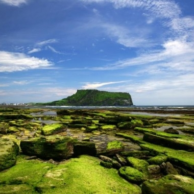 [No Shopping] Jeju Island 2nights 3days Tour