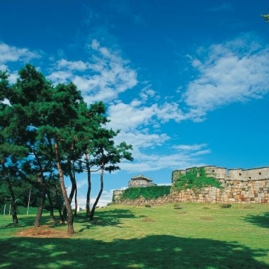 [No Shopping] Suwon Hwaseong Fortress Half Day Tour