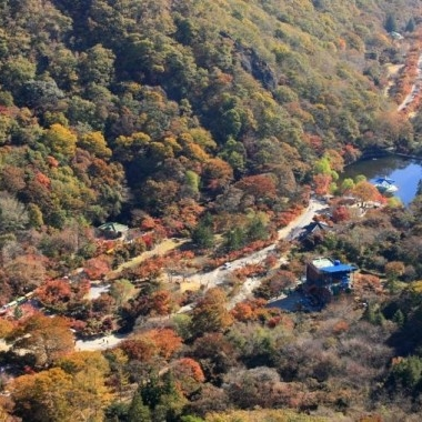 [No Shopping] Autumn Special- Mt. Naejang Fall Leaves Hiking Daily Tour